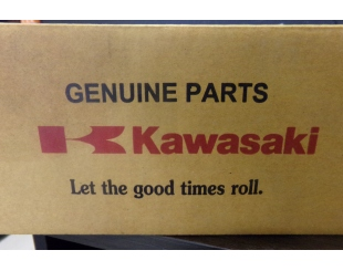 Filtro Aire Kawasaki 11013-0745